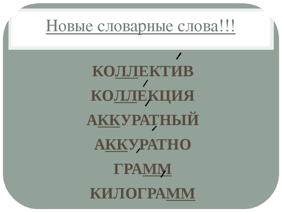 Новые словарные слова!!! КОЛЛЕКТИВ КОЛЛЕКЦИЯ АККУРАТНЫЙ АККУРАТНО ГРАММ КИЛОГ...