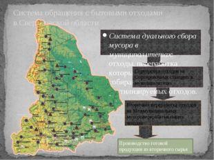 Система обращения с бытовыми отходами в Свердловской области Система дуально