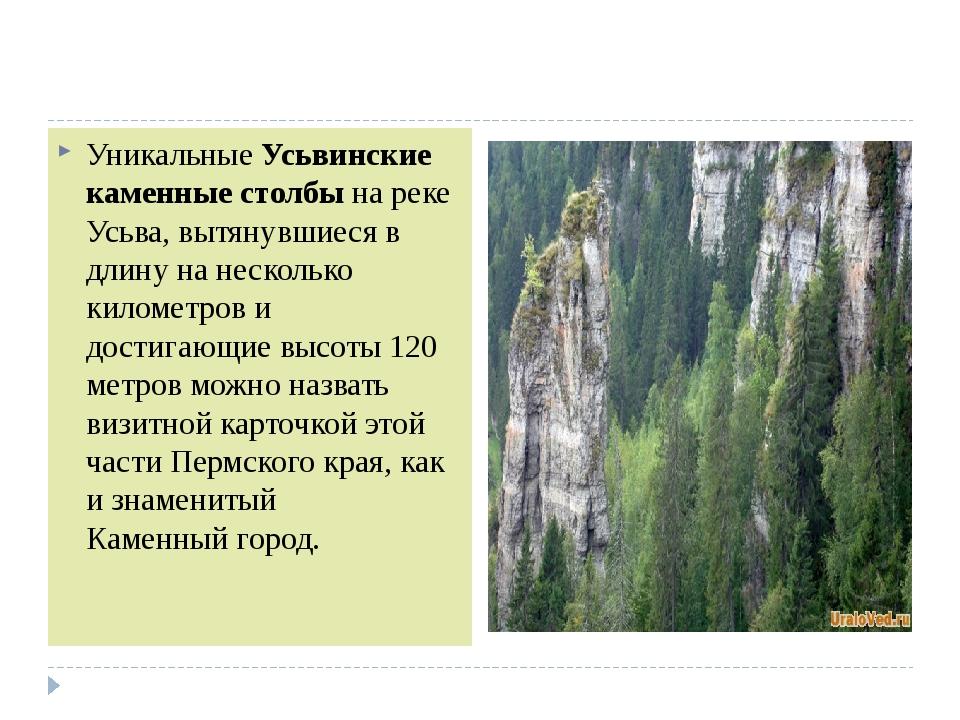 УникальныеУсьвинские каменные столбына реке Усьва, вытянувшиеся в длину на...
