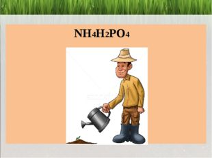 NH4H2PO4