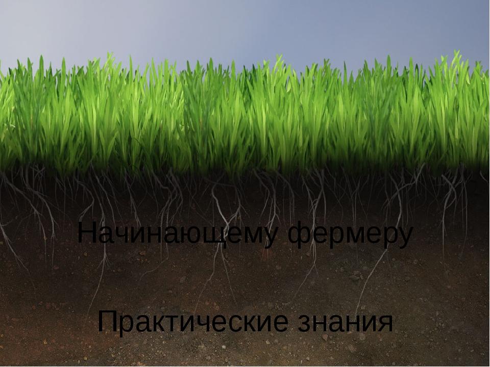 Начинающему фермеру Практические знания
