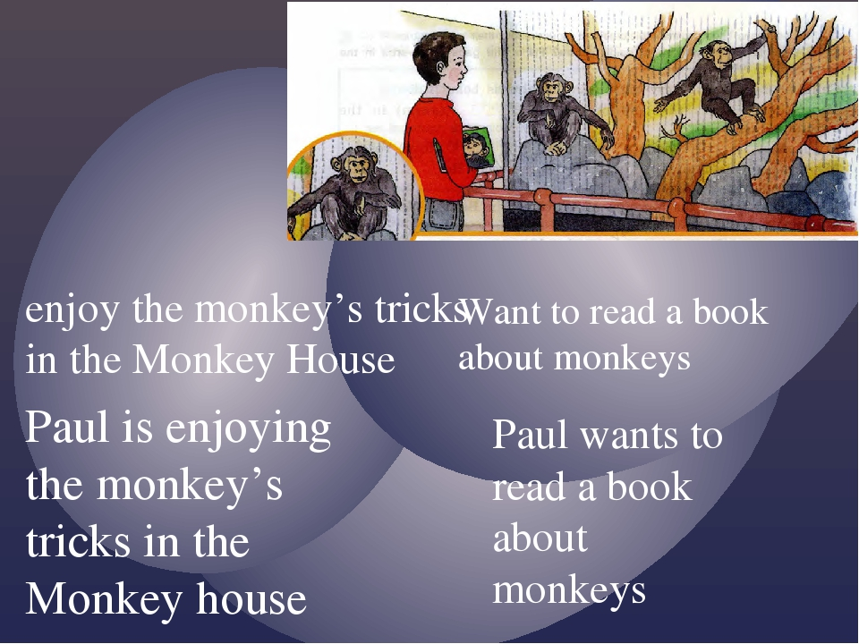 enjoy the monkey's tricks in the Monkey House Want to read a book about monke...