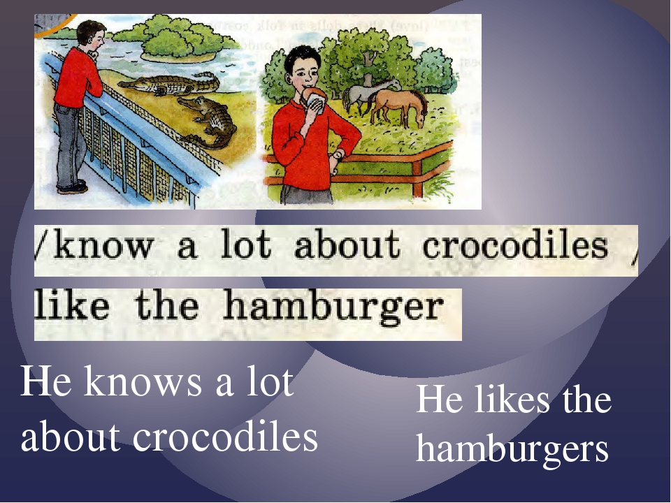 He knows a lot about crocodiles He likes the hamburgers