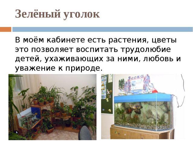Зелёный уголок В моём кабинете есть растения, цветы это позволяет воспитать т...