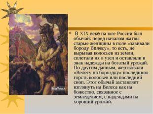 В XIX веке на юге России был обычай: перед началом жатвы старые женщины в по