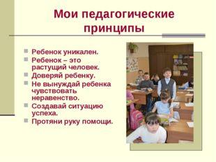 Мои педагогические принципы Ребенок уникален. Ребенок – это растущий человек.