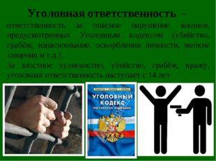 Уголовная ответственность - ответственность за опасное нарушение законов, пр