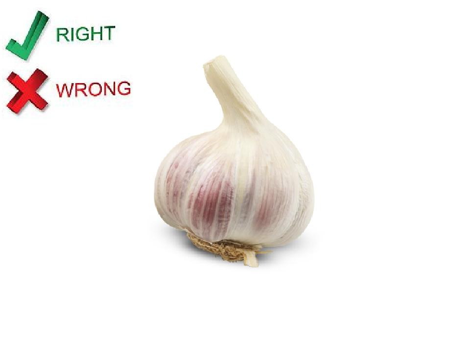 It's a garlic .
