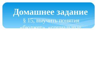 Домашнее задание § 15, выучить понятия «бюджет», «социальные программы», «нал