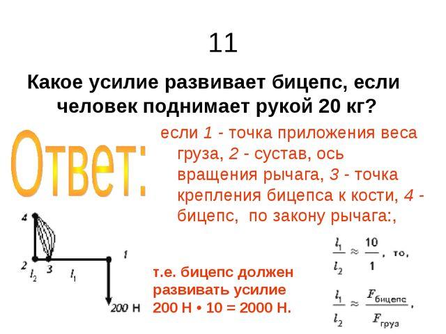 11 Какое усилие развивает бицепс, если человек поднимает рукой 20 кг? если 1...