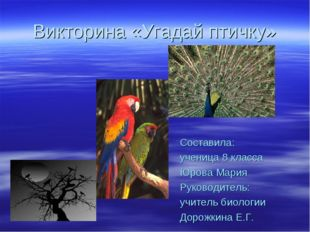 Викторина «Угадай птичку» Составила: ученица 8 класса Юрова Мария Руководител