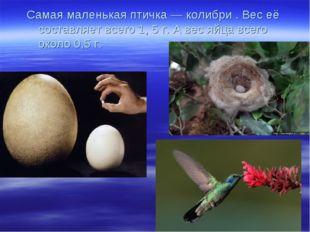 Самая маленькая птичка — колибри . Вес её составляет всего 1, 5 г. А вес яйца