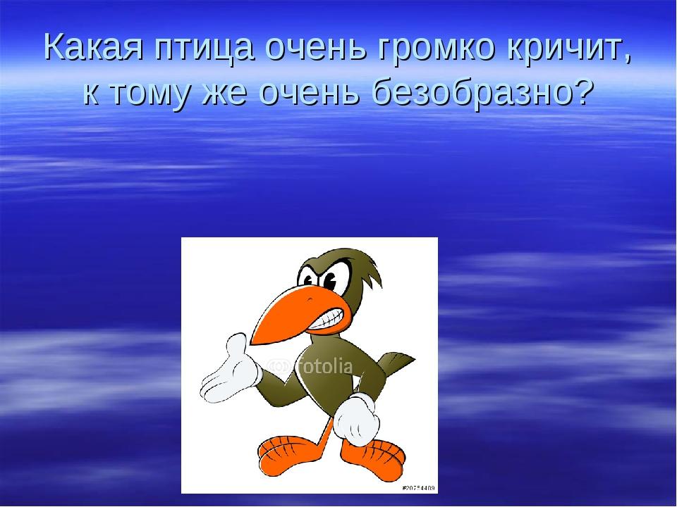 Какая птица очень громко кричит, к тому же очень безобразно?