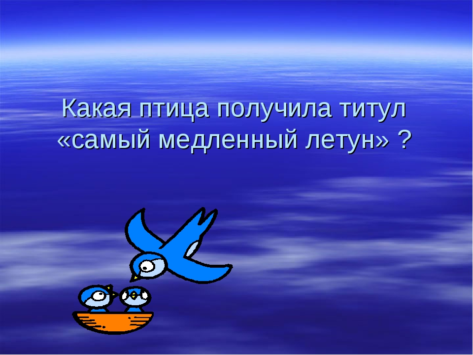 Какая птица получила титул «самый медленный летун» ?