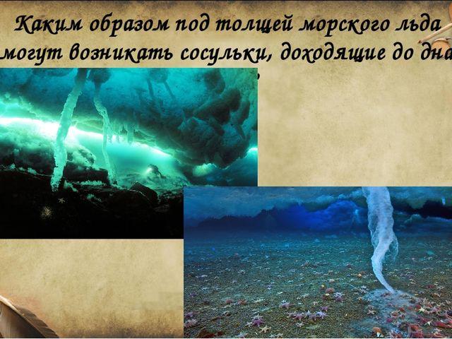 Каким образом под толщей морского льда могут возникать сосульки, доходящие до...