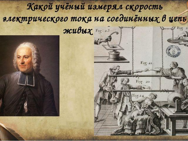 Какой учёный измерял скорость электрического тока на соединённых в цепь живых...