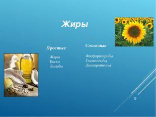 Жиры Простые Сложные Жиры Воски Липиды Фосфоролириды Гликолипиды Липопротеины
