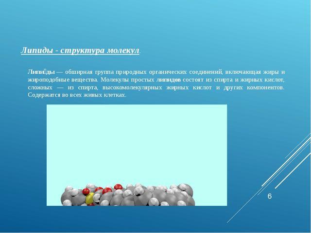 Липиды- структура молекул. Липи́ды— обширная группа природных органических...