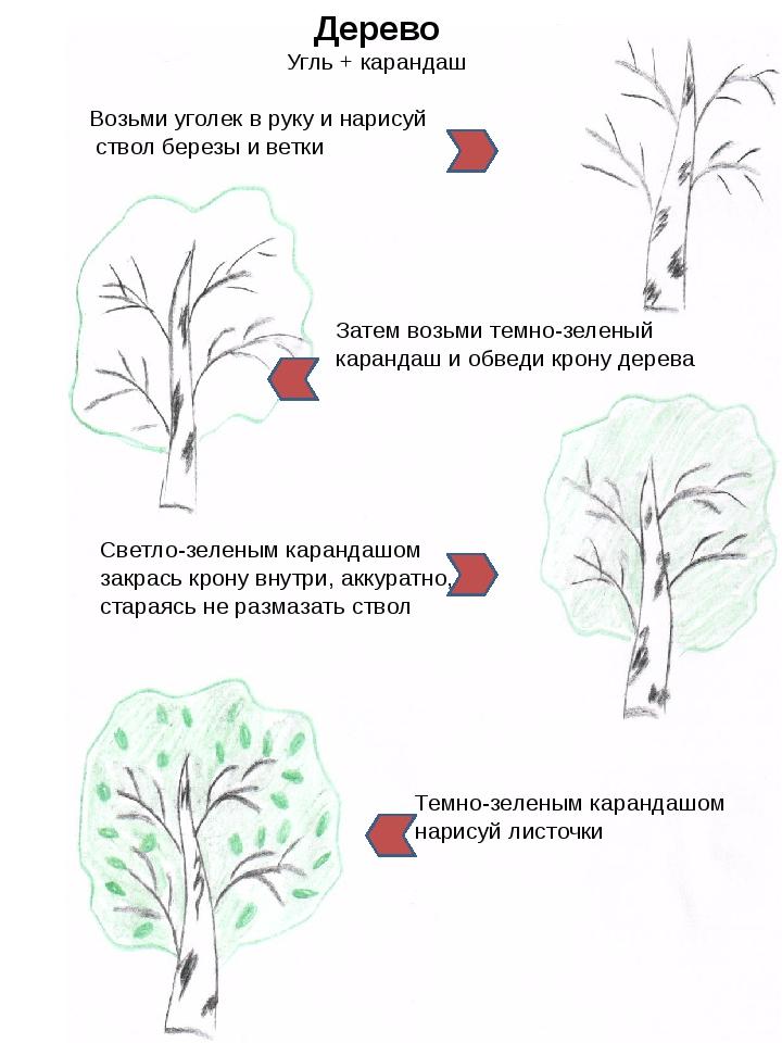 Дерево Угль + карандаш Возьми уголек в руку и нарисуй ствол березы и ветки З...