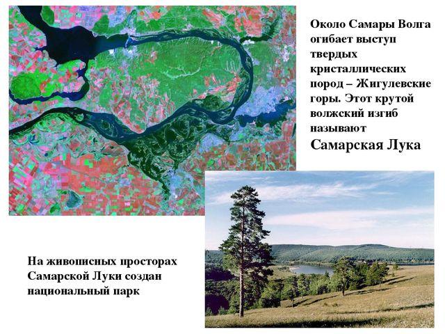 Около Самары Волга огибает выступ твердых кристаллических пород – Жигулевские...