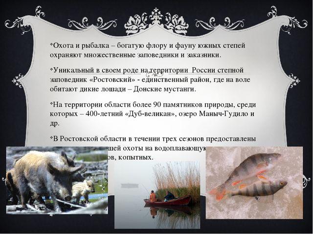 Охота и рыбалка – богатую флору и фауну южных степей охраняют множественные...