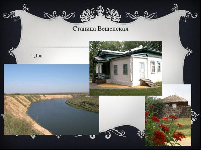Станица Вешенская Дон