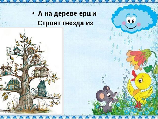 А на дереве ерши Строят гнезда из лапши!