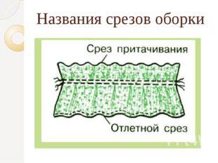 Названия срезов оборки