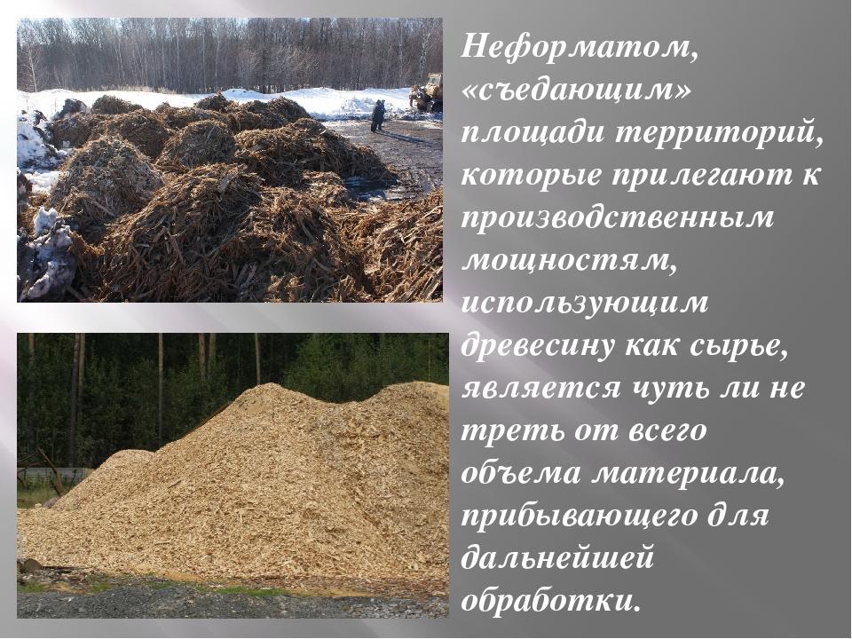 Неформатом, «съедающим» площади территорий, которые прилегают к производствен...