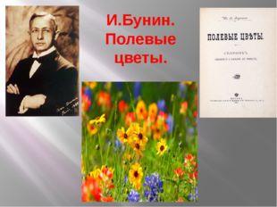И.Бунин. Полевые цветы.