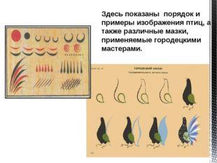 Здесь показаны порядок и примеры изображения птиц, а также различные мазки, п
