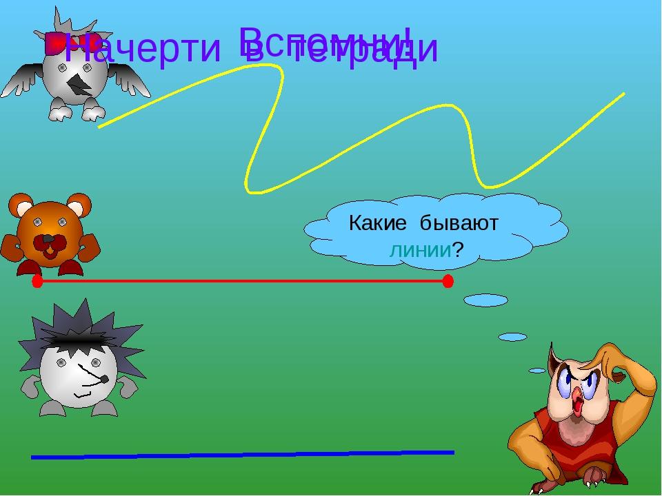 Вспомни! Какие бывают линии? Начерти в тетради