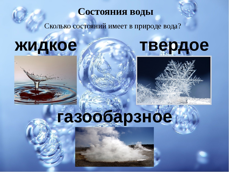 Состояния воды Сколько состояний имеет в природе вода? жидкое твердое газооба...