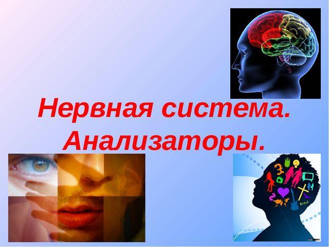 Нервная система. Анализаторы.