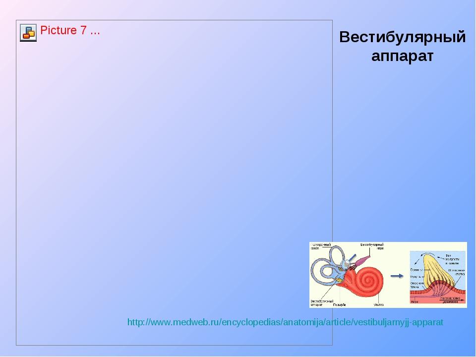 Вестибулярный аппарат http://www.medweb.ru/encyclopedias/anatomija/article/ve...