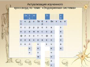 Актуализация изученного кроссворд по теме: «Эндокринная система» 2и 3а 4г 7г