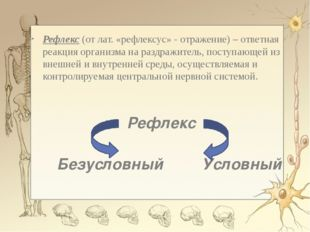 Рефлекс (от лат. «рефлексус» - отражение) – ответная реакция организма на ра