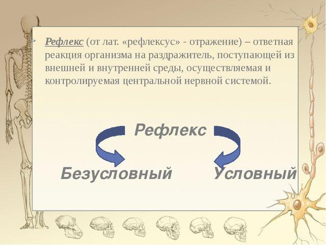 Рефлекс (от лат. «рефлексус» - отражение) – ответная реакция организма на ра...