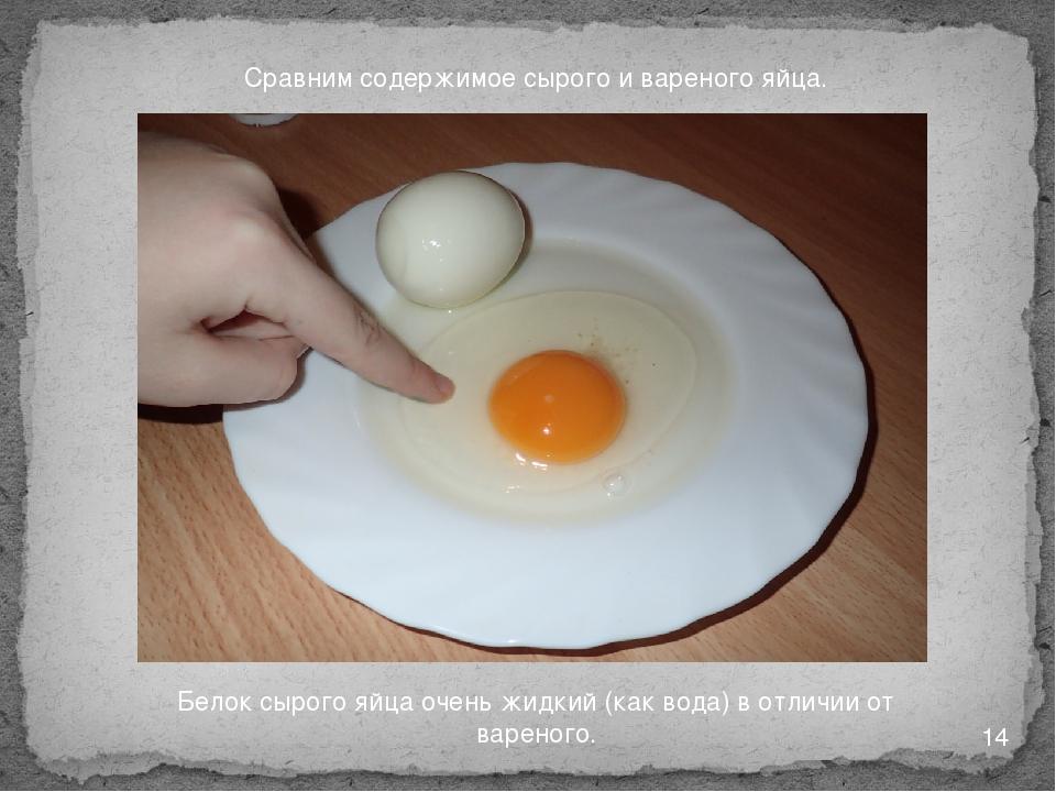 Сравним содержимое сырого и вареного яйца. Белок сырого яйца очень жидкий (ка...