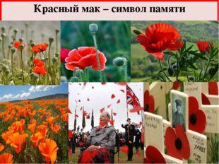 Красный мак – символ памяти FokinaLida.75@mail.ru Во время рассказа происходи