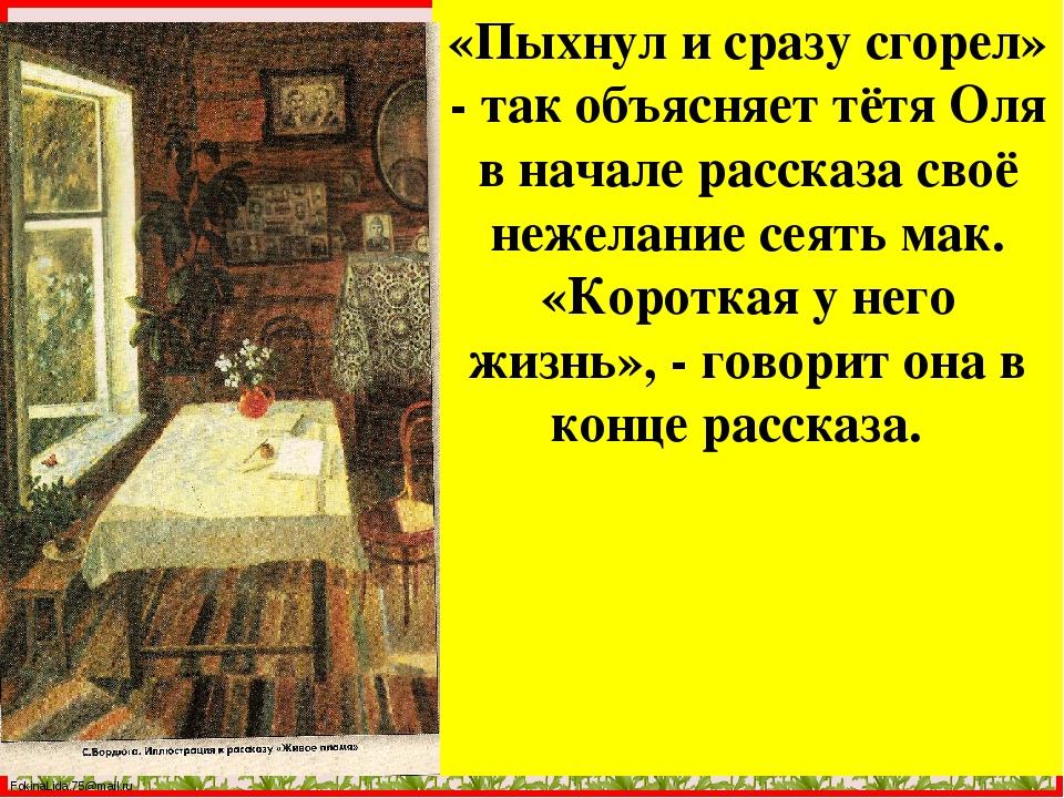«Пыхнул и сразу сгорел» - так объясняет тётя Оля в начале рассказа своё нежел...