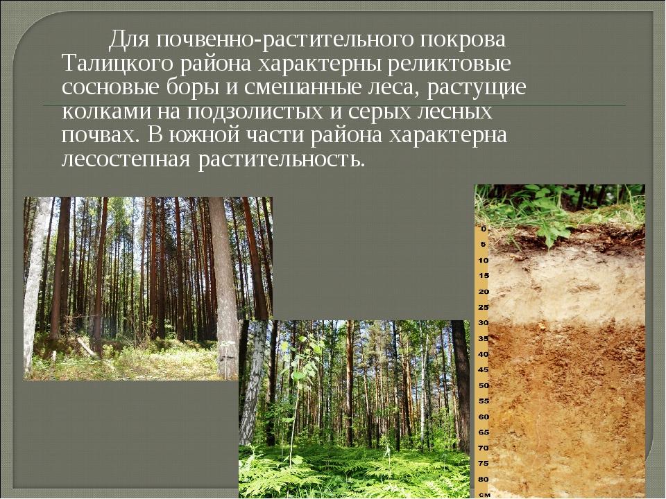 Для почвенно-растительного покрова Талицкого района характерны реликтовые со...