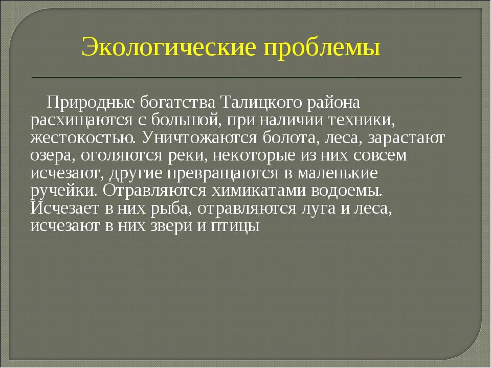 Природные богатства Талицкого района расхищаются с большой, при наличии техн...