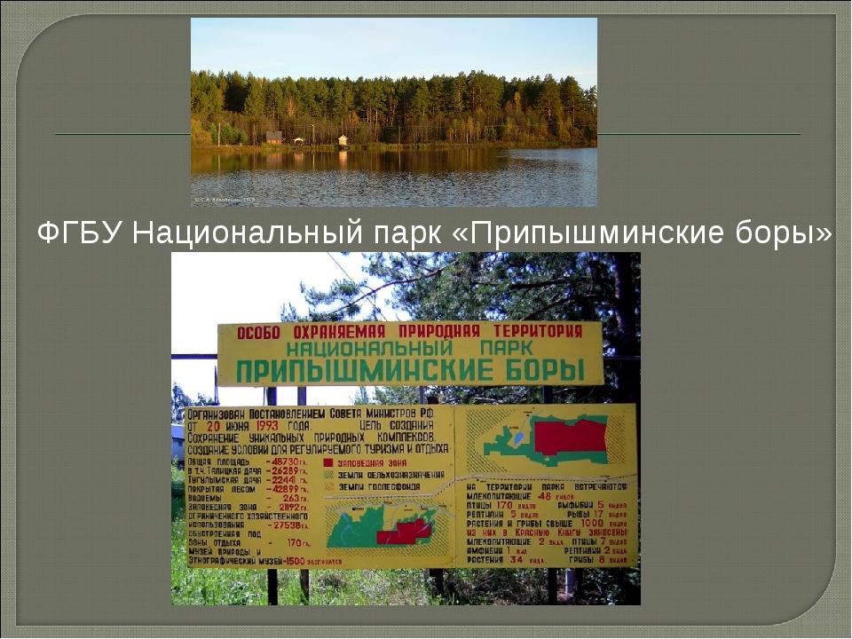 ФГБУ Национальный парк «Припышминские боры»