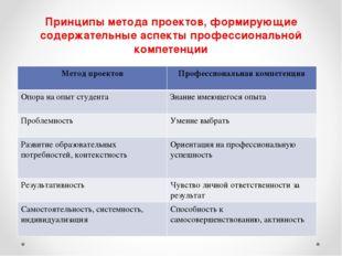 Принципы метода проектов, формирующие содержательные аспекты профессиональной