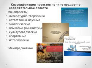 Классификация проектов по типу предметно-содержательной области - Монопроект