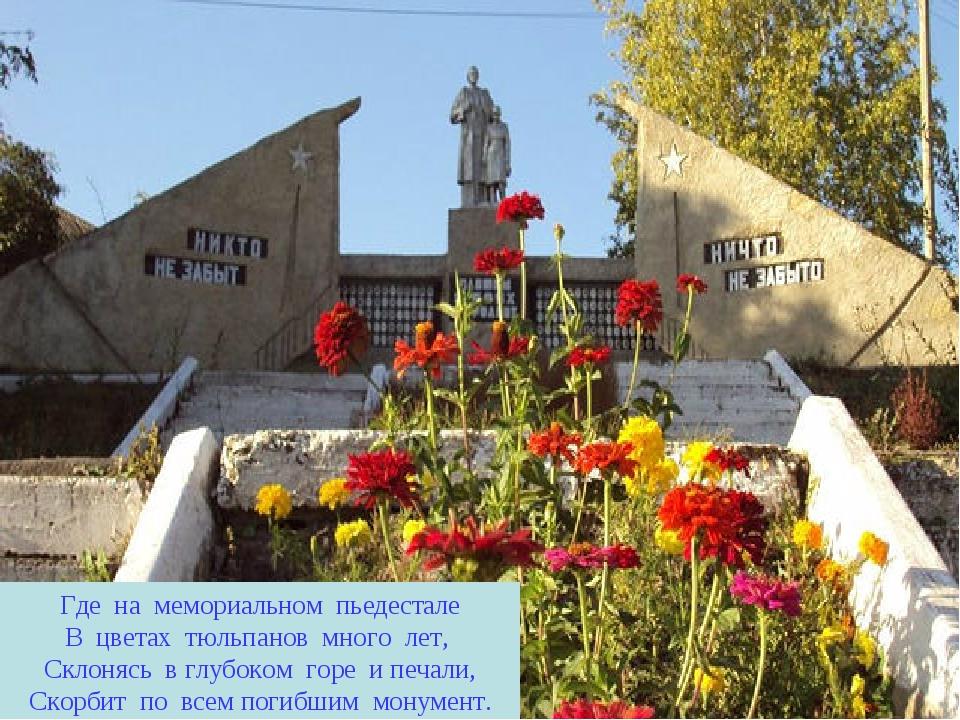 Где на мемориальном пьедестале В цветах тюльпанов много лет, Склонясь в глубо...