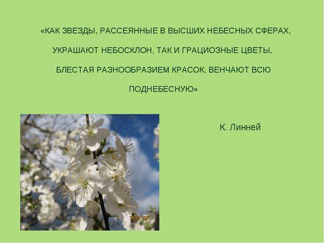 «КАК ЗВЕЗДЫ, РАССЕЯННЫЕ В ВЫСШИХ НЕБЕСНЫХ СФЕРАХ, УКРАШАЮТ НЕБОСКЛОН, ТАК И...