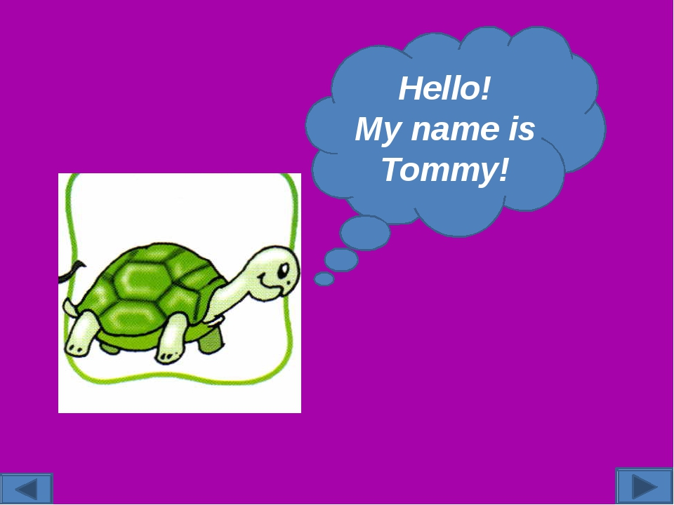 Hello! My name is Tommy!