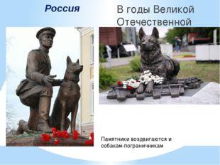 Россия В годы Великой Отечественной войны собаки помогали на фронте. Собака--